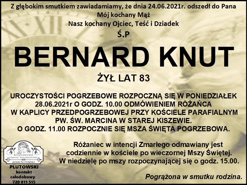 NekroIog Bernard Knut